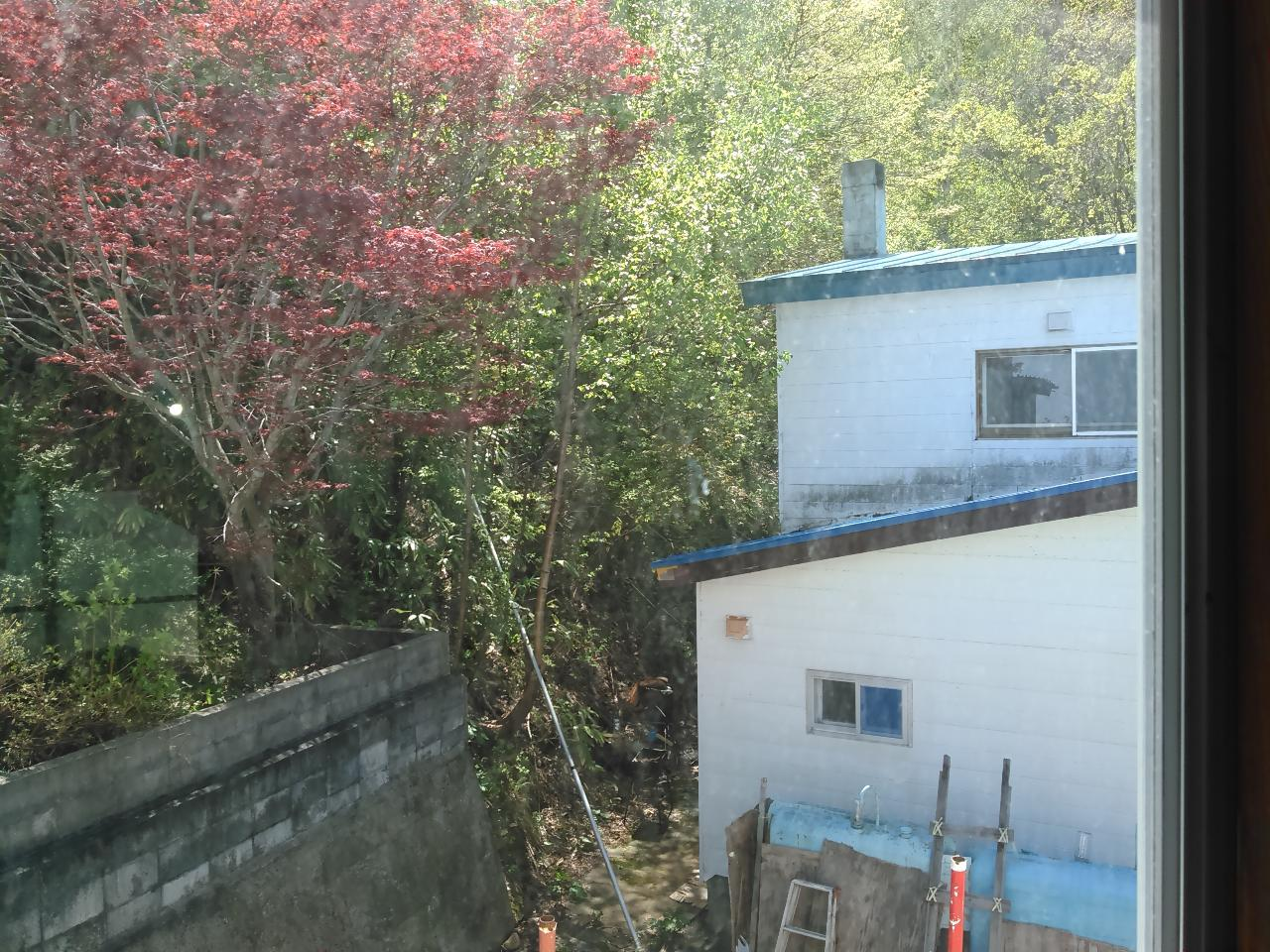 View_from_Stairs_window_lg